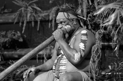 Aboriginal elder playing the yikadi